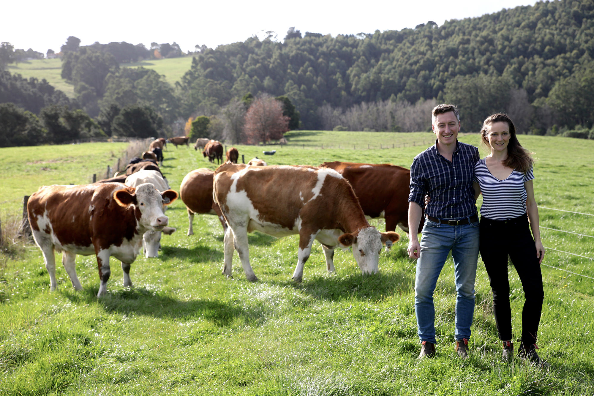 Josh and Jyoti with some of their retired cow herd in South Gippsland.